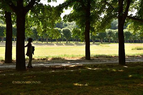 金色の午後 フォンテーヌブローの森