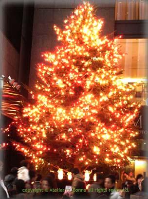 夕暮れ時のクリスマスツリー